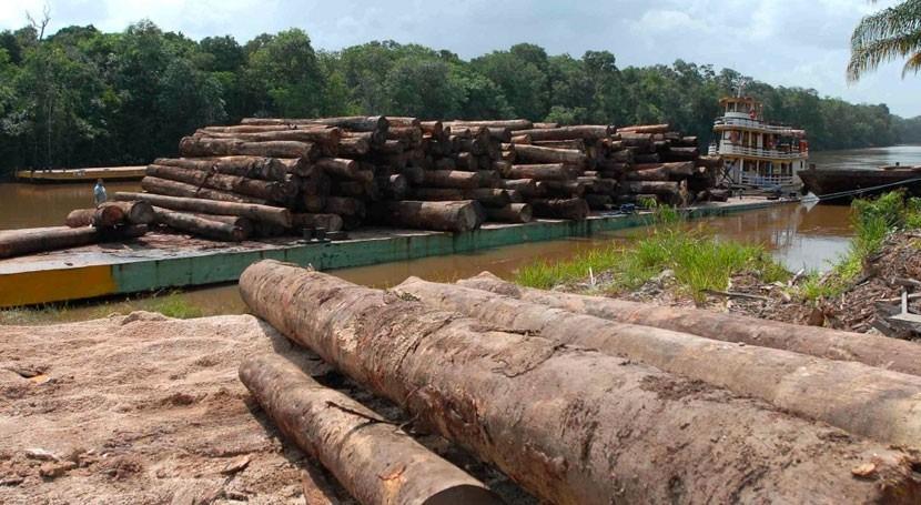 deforestación altera ciclo hidrológico Amazonia