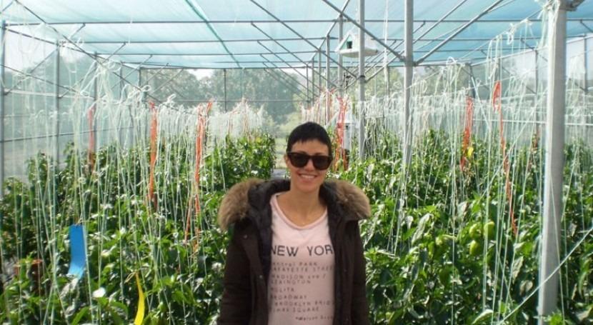 estructuras mallas aumentan eficiencia hídrica cultivos hortícolas región mediterránea
