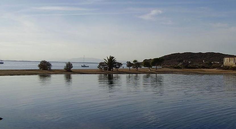 grupo expertos estudia uso filtros verdes contaminación Mar Menor