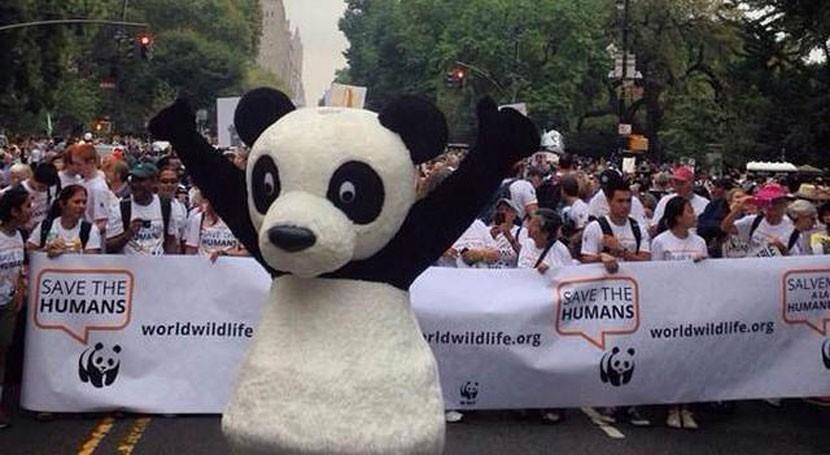 grupos ecologistas piden Rajoy que lidere lucha cambio climático UE