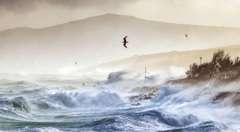 Culmina década más cálida medidas efectivas cambio climático