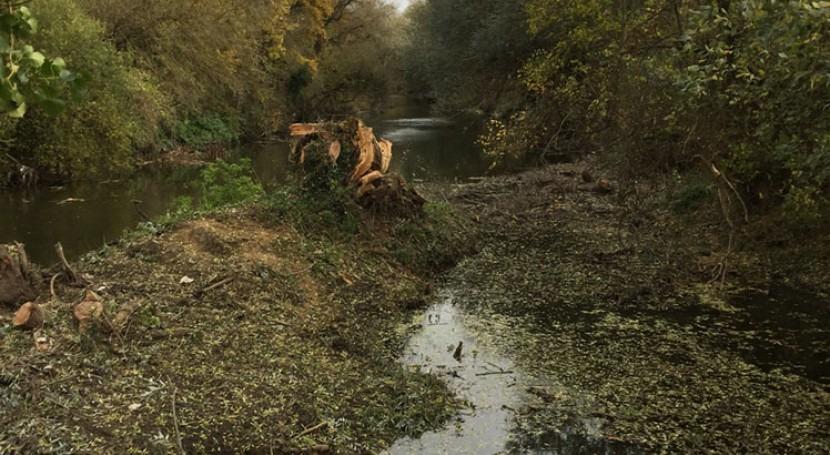 URA y Ayuntamiento Vitoria-Gasteiz colaboran mantenimiento río Zadorra, Margarita