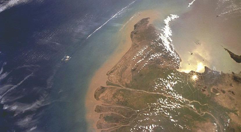primeros seres tierra firme surgieron estuarios y deltas