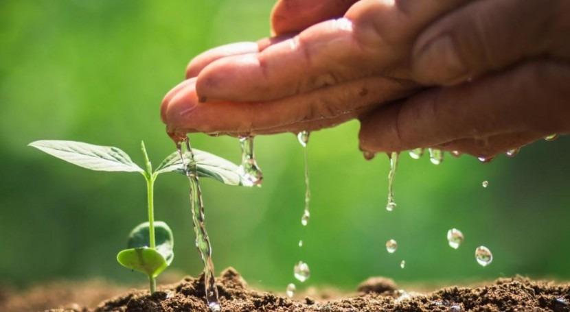 Ministros agricultura y ambiente impulsan adaptación al cambio climático Centroamérica