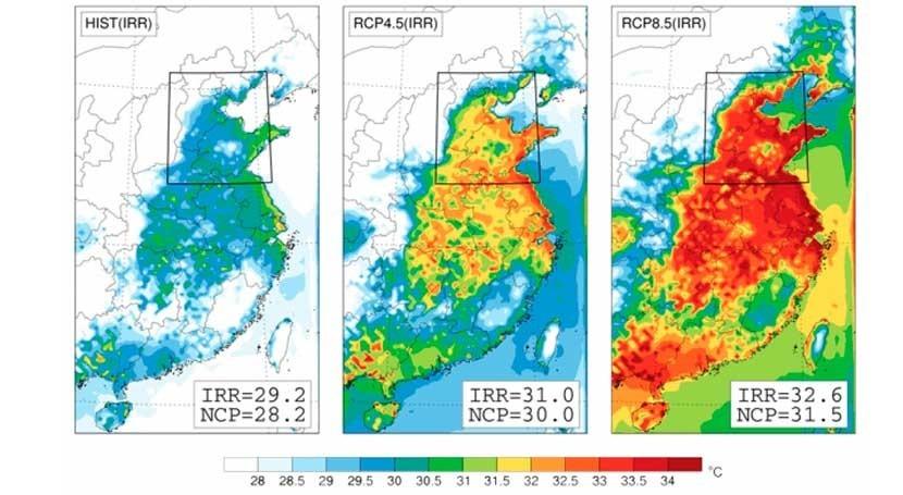 regadío agrava impacto cambio climático región más agrícola y poblada China