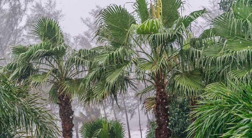 monzón Bangladés obliga miles personas ser evacuadas y deja 5 niños fallecidos
