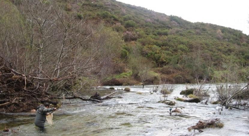 Criterios que hay que tener cuenta catalogar calidad masa agua