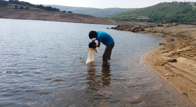 Arranca campaña control larvario mejillón cebra embalses cuenca Ebro