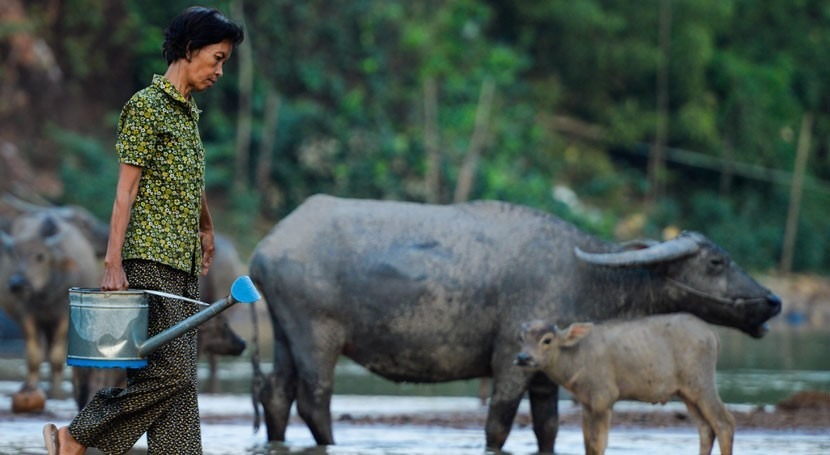 mujeres camboyanas lideran lucha seguridad agua