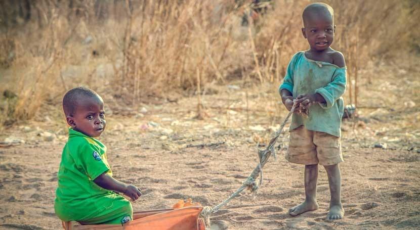 nueva herramienta que rastrea brotes cólera podría facilitar detección epidemias