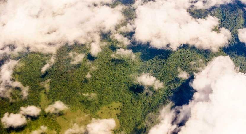 Teledetección y nubes: ¿Dónde viven especies amenazadas?