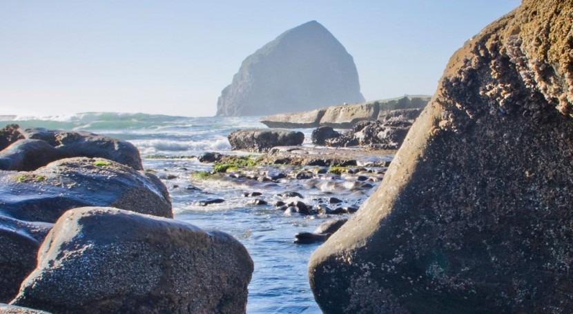 océano, víctima silenciosa cambio climático