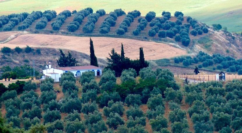 reducción huella hídrica y cambio climático, retos sector agrario español