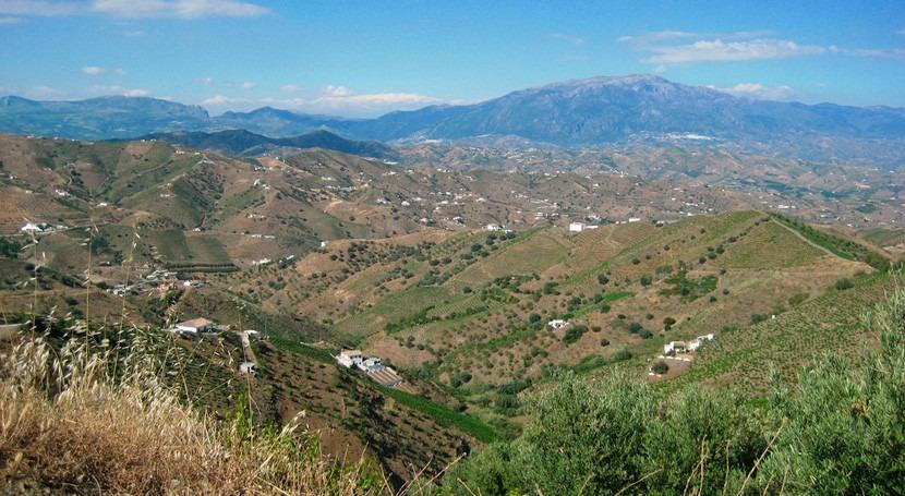 Andalucía y organizaciones agrarias, juntos mejorar uso agua Axarquía