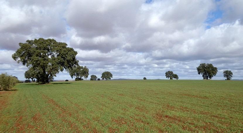 Campo Montiel sale defensa agua y minería tierras raras