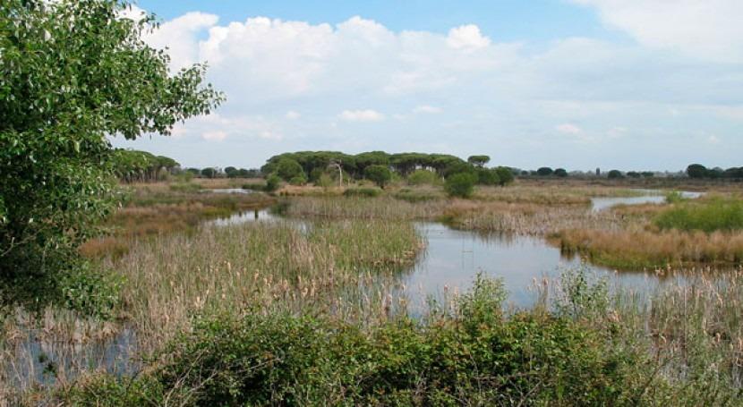 Andalucía defiende decisión no autorizar proyecto gas 'Marismas Oriental' Doñana
