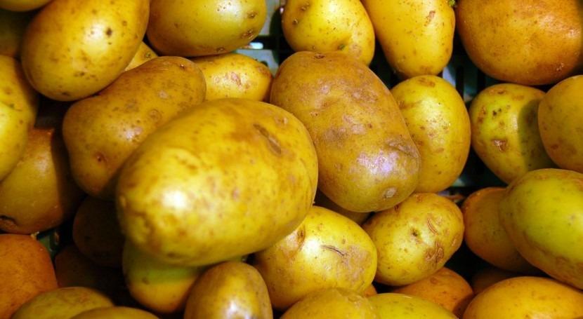 ¿Por qué cultivar patatas ambiente marciano podría servir enfrentar cambio climático?