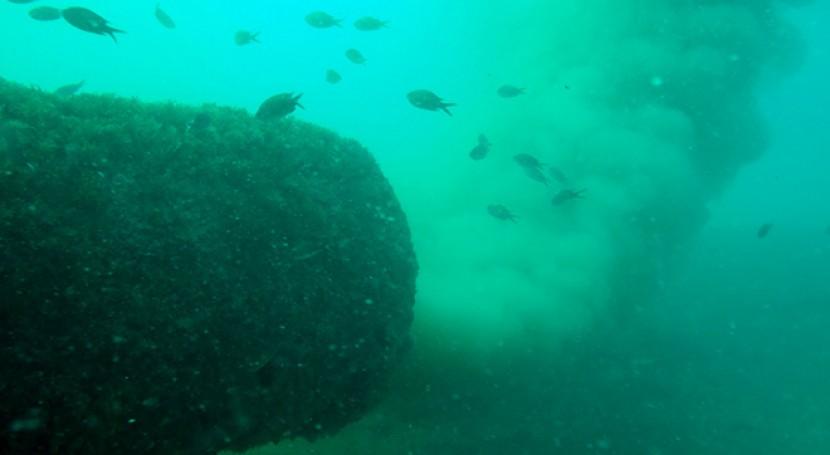 plaga emisarios submarinos