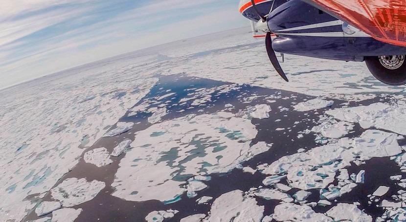 deriva transpolar Ártico ocasiona que hielo se derrita antes abandonar vivero