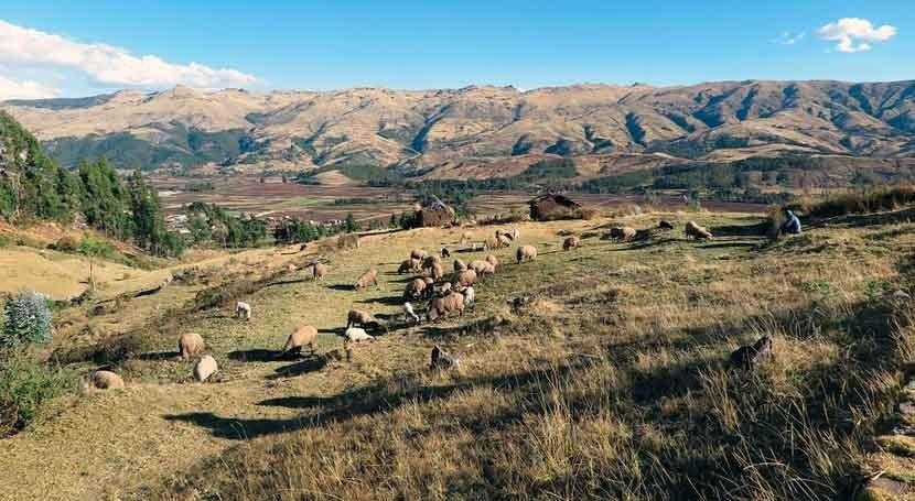 Agua potable y retretes 4.000 metros altura Perú gracias Cooperación Española