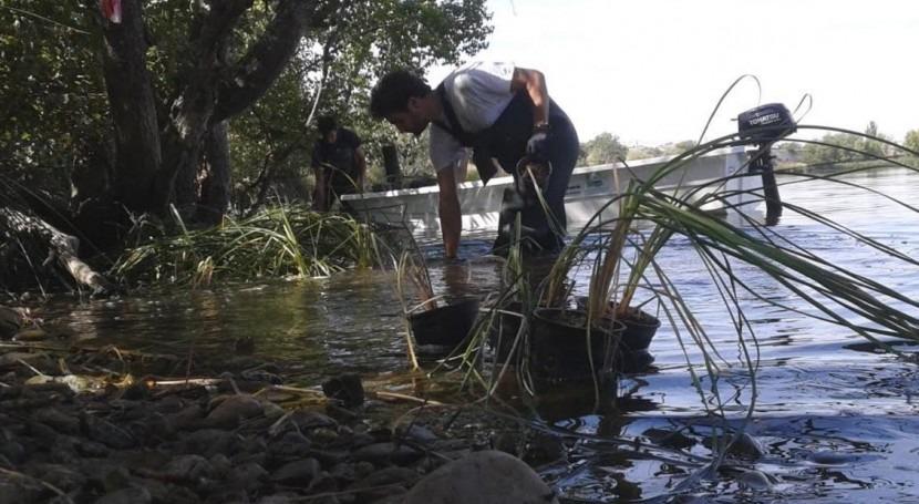 Reactivado vivero Parque Regional Sureste proteger plantas acuáticas