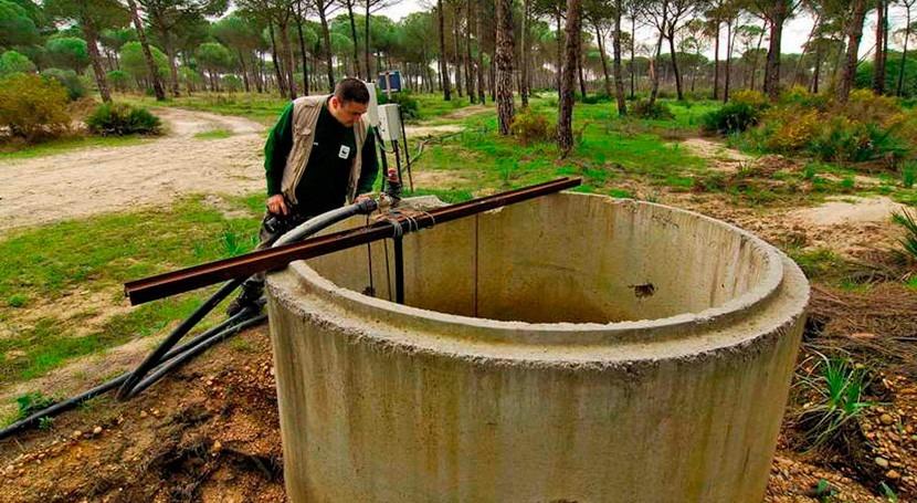 regadío y pozos ilegales siguen aumentando Doñana, WWF