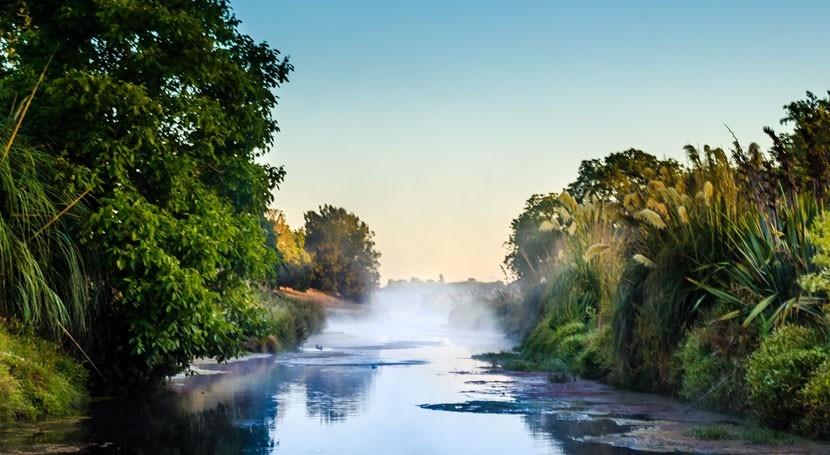 ¿Cuál es mejor Humedal Ramsar mundo?