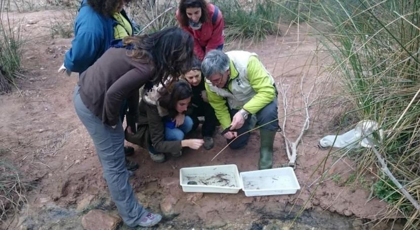 cauce Chícamo, escenario estudio estado ecológico ríos temporales