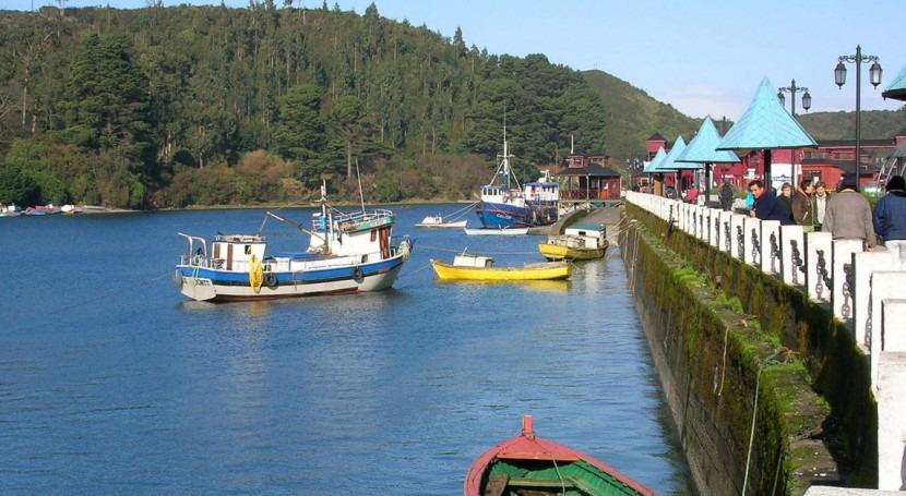 Aparecen Puerto Montt millones salmones muertos microalgas asociadas Niño