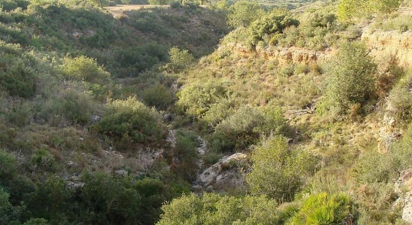 Rambla (Wikipedia/CC).