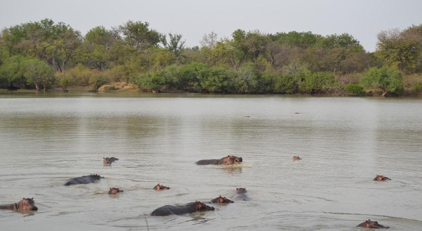 Benín, Burkina Faso y Níger declaran nuevo sitio Ramsar transfronterizo