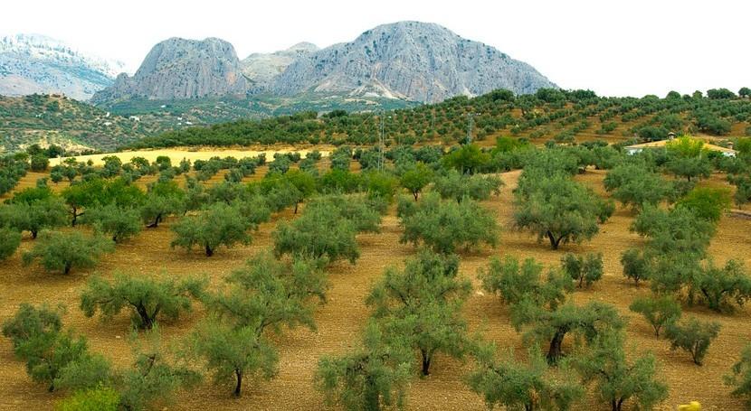 regadío andaluz, amenazado especies exóticas invasoras