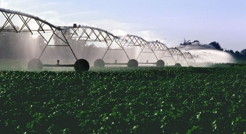 PSOE promete agricultores agua precio asequible y tarifa eléctrica flexible
