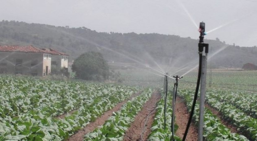 España lidera ahorro agua uso agrario nivel mundial