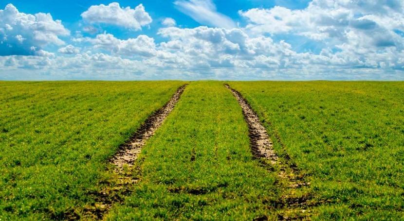 agricultura regadío, clave sostenibilidad medio rural