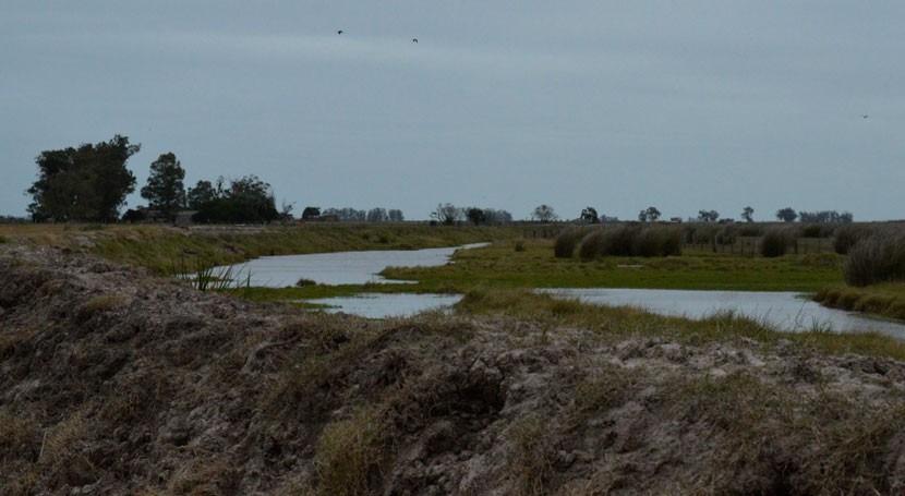 Avanza proyecto regulación hídrica Bañados Rocha Uruguay