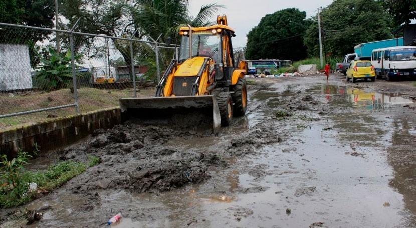 Panamá remueve árboles calles minimizar riesgo inundaciones