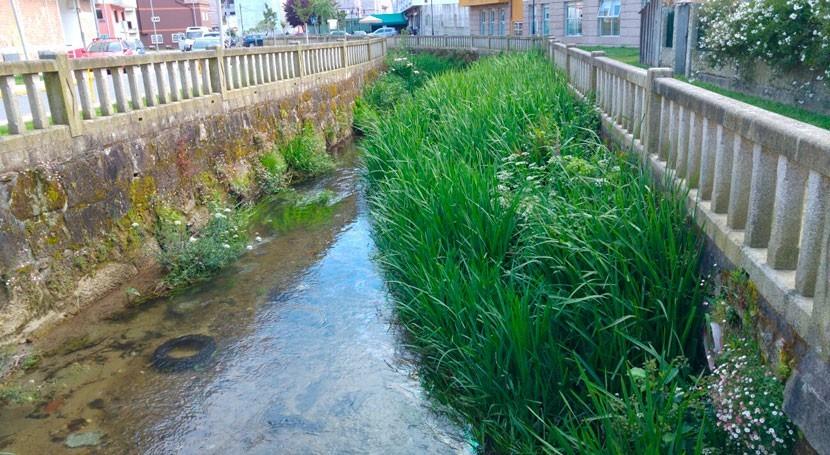 Galicia limpia márgenes tramo urbano río Maceiras Redondela inundaciones