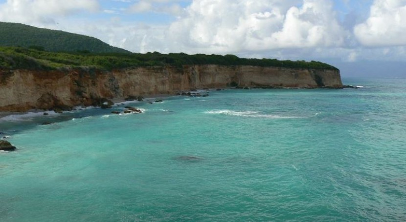manglares: estrategia República Dominicana hacer frente al cambio climático