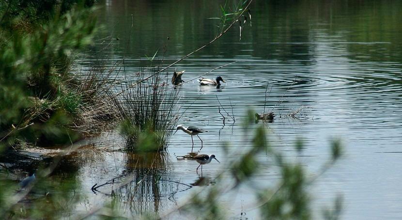 recuperación ecosistemas hídricos y uso sostenible agua, objetivos Valencia