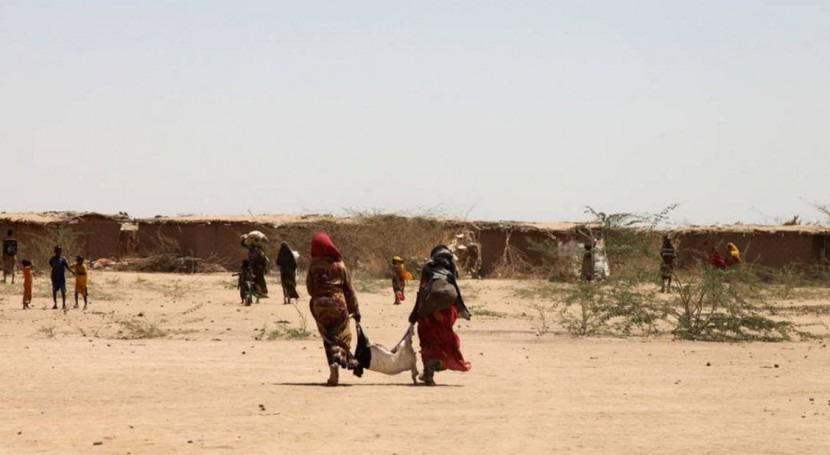 ¿ qué es necesaria respuesta internacional más firme y coordinada frente Niño?