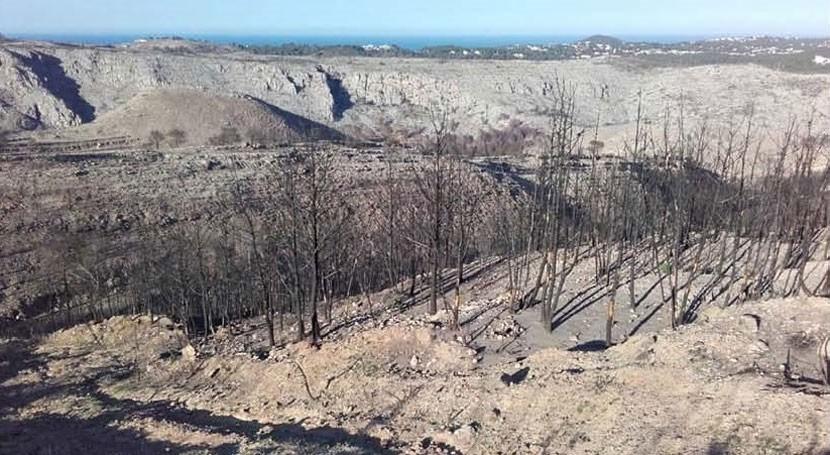 Autorizadas actuaciones emergencia hidrológico-forestales zona incendiada Alicante