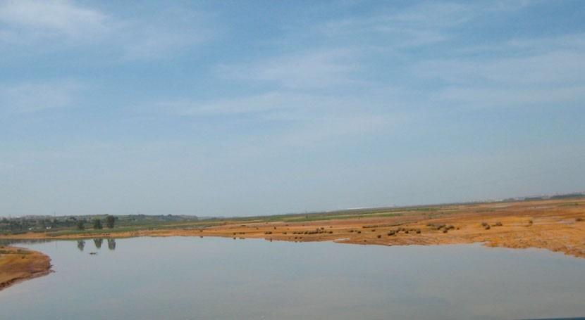 CHG cierra 42 pozos dentro plan poner fin sobreexplotación acuífero Doñana
