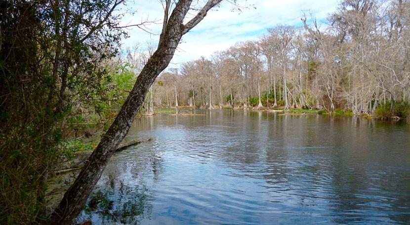 Cataluña destina 7,2 millones euros restauración y recuperación bosques ribera