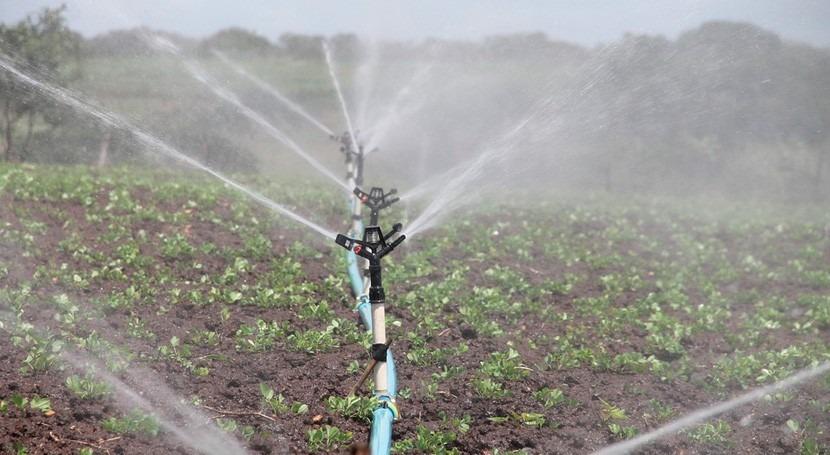 consumo agua riego España aumentó 4,1% 2014 respecto al año anterior