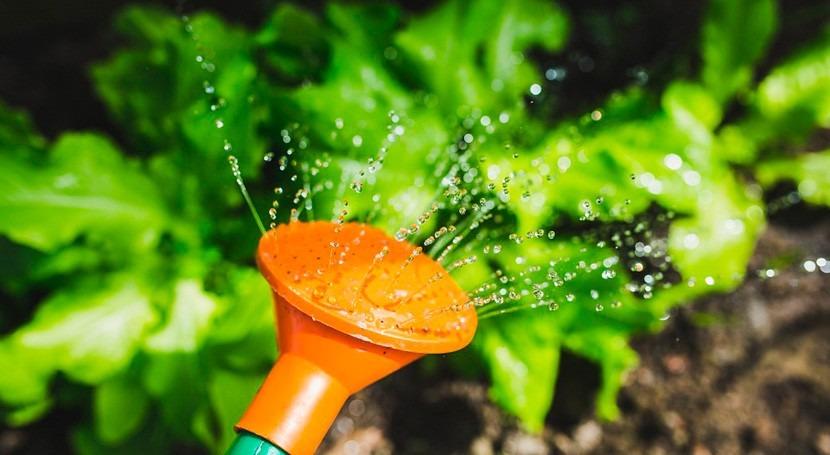 Life+ Irriman: Sistemas riego inteligente que reducen 30% consumo agua