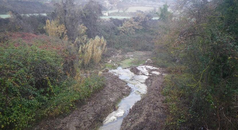 Desbrozado tramo más siete kilómetros cauce arroyo Argençola