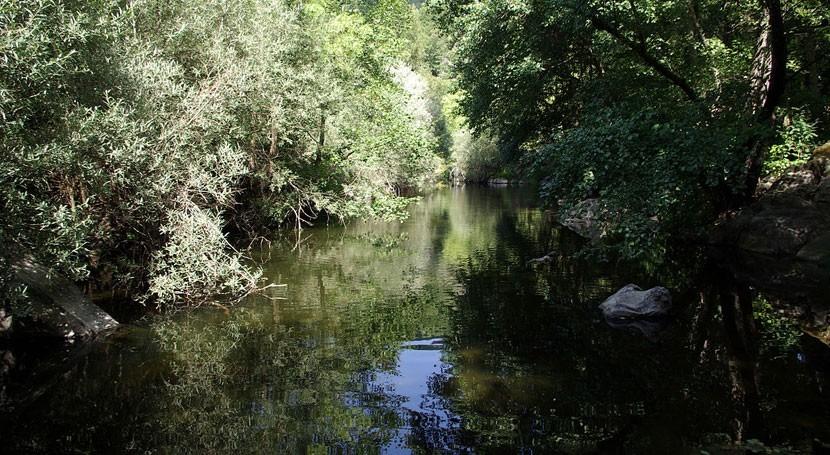 Licitada conservación y mantenimiento zona regable río Alagón 2017-2020