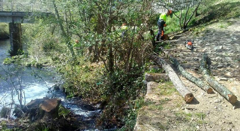 Confederación Miño-Sil avanza trabajos mejora márgenes río Arenteiro