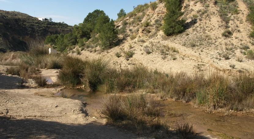 río Chícamo, pequeño afluente árido que esconde gran biodiversidad